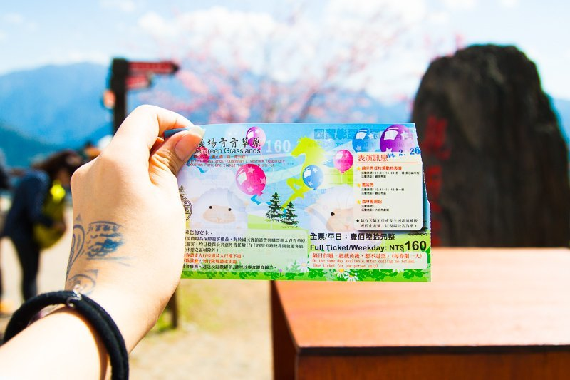 Cost of Ticket to Green Green Grasslands, Cingjing Farm, Taiwan