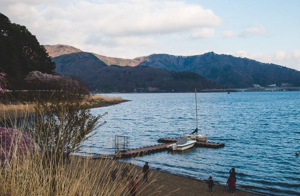 Cherry Blossoms in late April, Lake Kawaguchiko