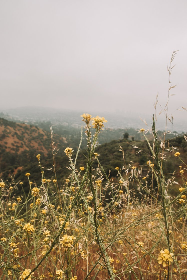Griffith Park Hike, Bikes and Hikes LA, 2-week no car US itinerary