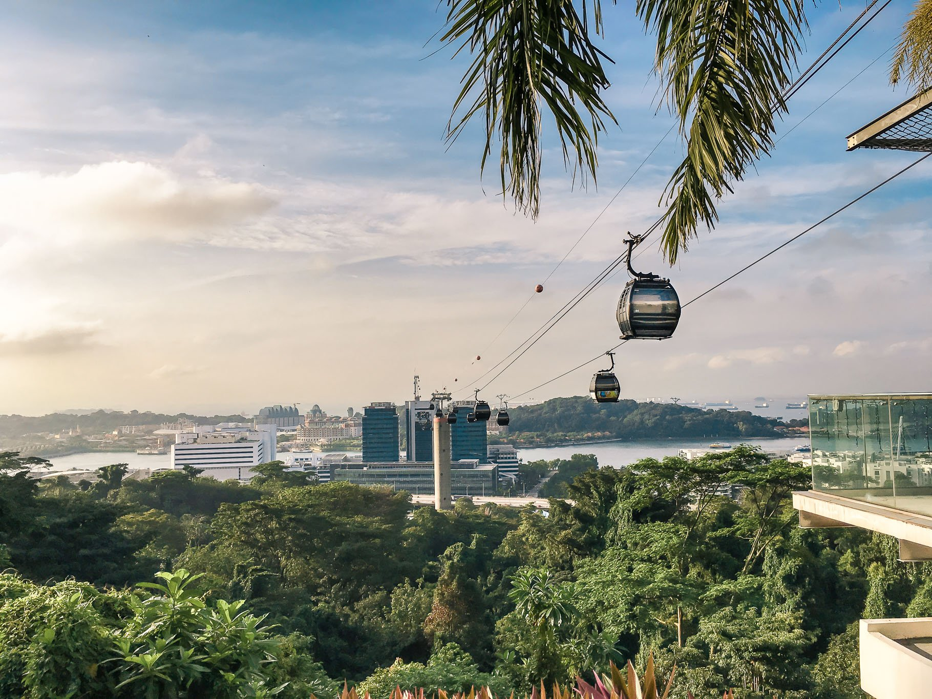 Marang Trail: Visit Faber Peak, Henderson Waves and Forest Walk in one hike